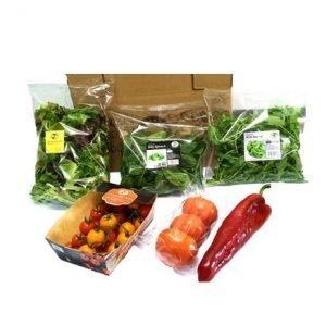 Salad Box RTE