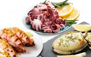 The French Grocer - Seafood - Molluscs Selection